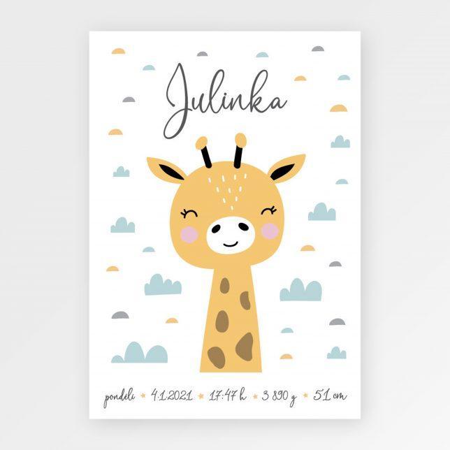 Žirafka narození 1
