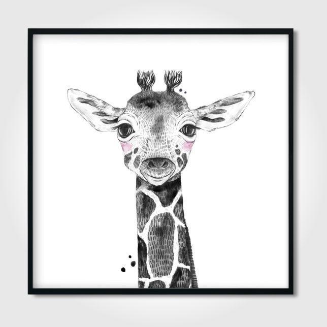 Žirafa 4