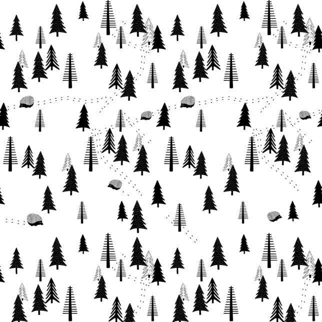 Ježeček v lese 4