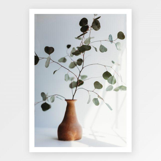 Eukalyptus in the vase 1