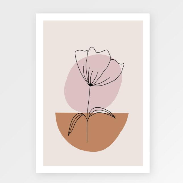 Kameny a květina 1