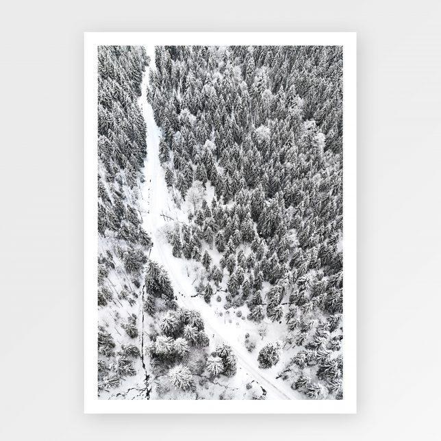 Scandi forest 1